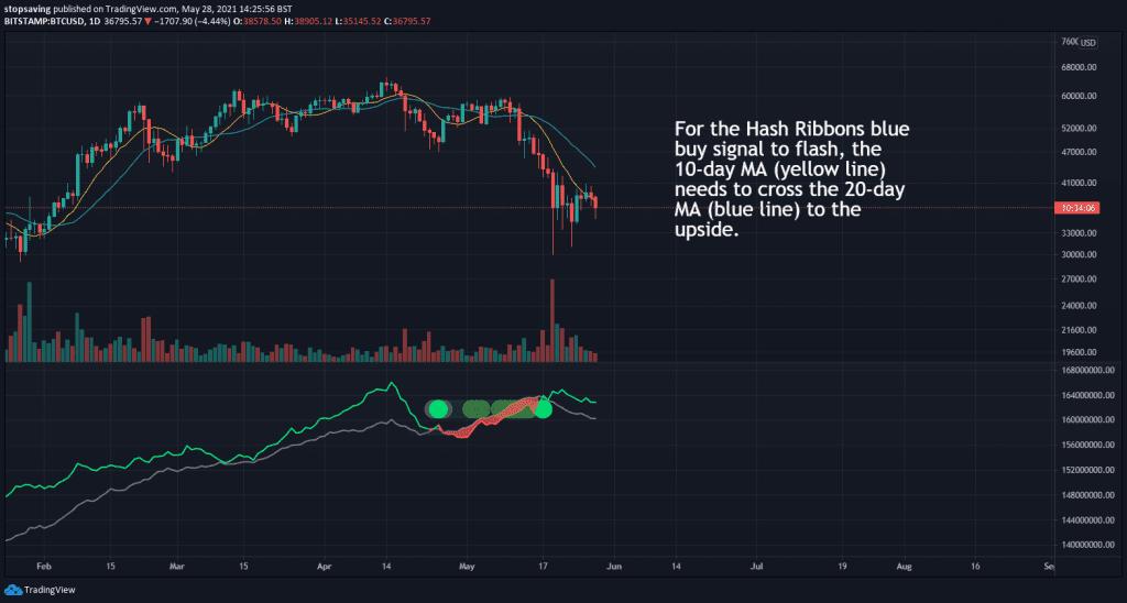 hash ribbons buy signal update