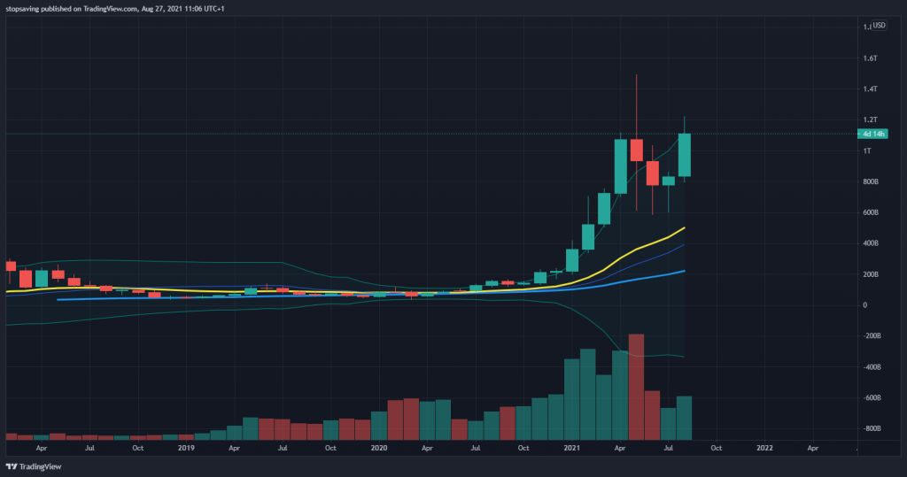 Altcoin market cap monthly chart (excluding bitcoin). Taken on 27082021.
